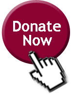donate-now-button-sauk-county-humane-society