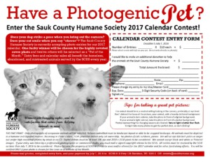 Calendar Contest Flier 2017 red